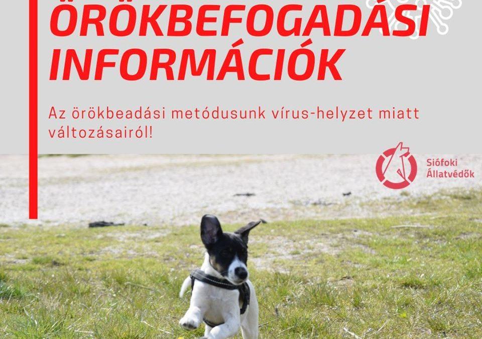 Vírus-helyzeti információ